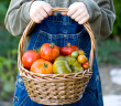A basket of vegetables to share